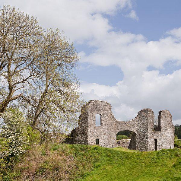 Discover Newcastle Emlyn (Castell Newydd Emlyn)